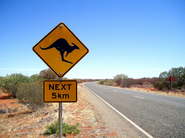 ../../../_images/kangaroos4.jpg